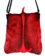 messenger-springbok-rood